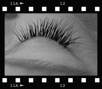 5-31-11_After_Lashes_behind_side_view_c.jpg